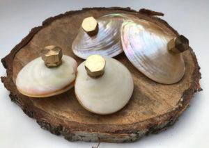 hot shells